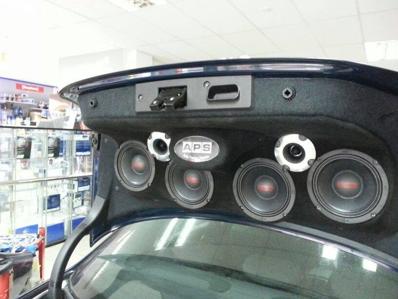 Portón personalizado APS Audio extremo