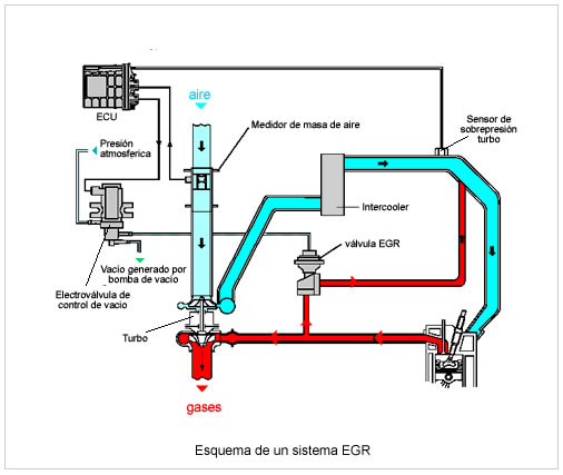 Anular Egr C 243 Mo Hacerlo Ventajas Y Desventajas